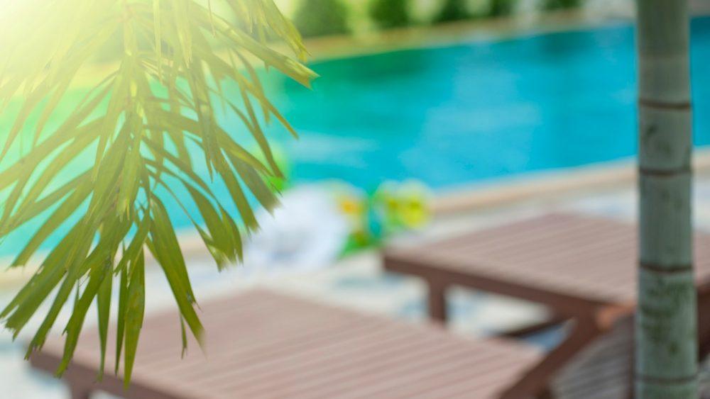 piscina con arredo giardino